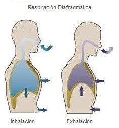respiación diafragmática