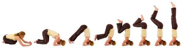 postura sirsasana